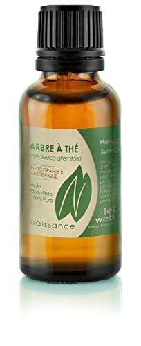les bienfaits de l huile essentielle tea tree acn 233