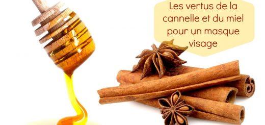 Les vertus de la cannelle et du miel pour un masque visage